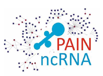 Projekt ncrnapain: Charakteristika projektu I Název: Non-coding RNAs in neurogenic and neuropathic pain mechanisms and their application for risk assessment, patient stratification and personalised