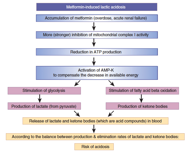 MILA a MALA Metformin-induced lactic acidosis x metformin-associated lactic acidosis Lalau