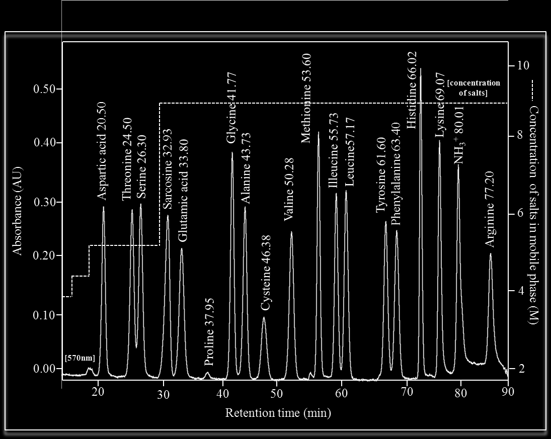 Int. J. Electrochem. Sci., Vol. 7, 2012 4292 During the separation of mixture of 17 amino acids with addition of sarcosine its retention time was 32.93 minutes (Fig. 2).