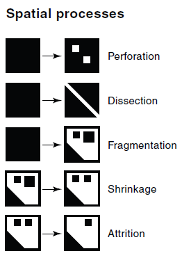 FRAGMENTACE Figure 1 Five ways in which landscapes can be modified by humans (redrawn from Forman, R.T. 1995: Land Mosaics. The Ecology of Landscapes and Regions.