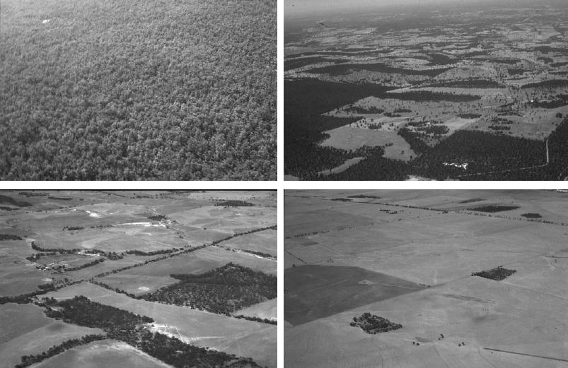 FRAGMENTACE Figure 3 States of landscape condition: Intact (top left), Variegated (top