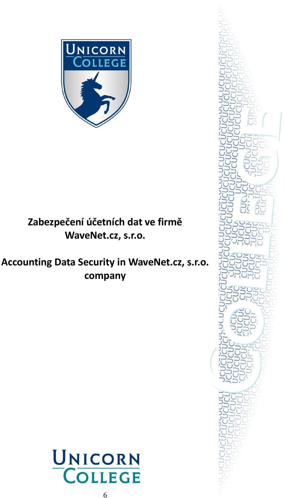 Accounting Data Security in