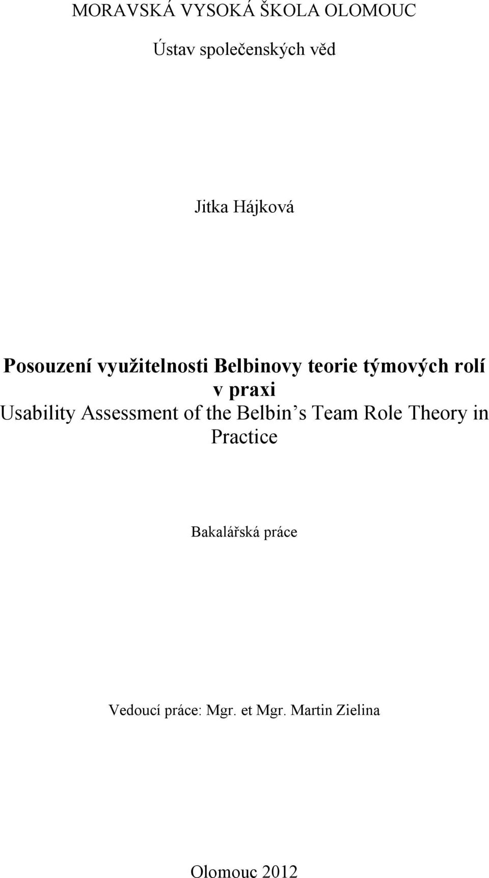 Usability Assessment of the Belbin s Team Role Theory in Practice