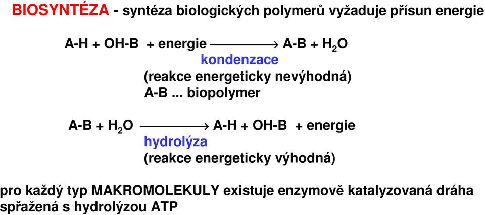 .. biopolymer A-B + H 2 O A-H + OH-B + energie hydrolýza (reakce energeticky