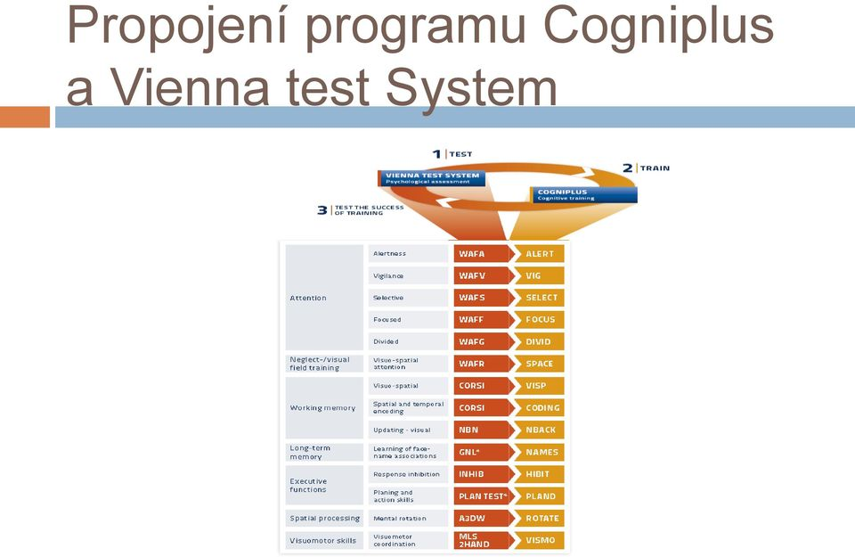 Cogniplus a