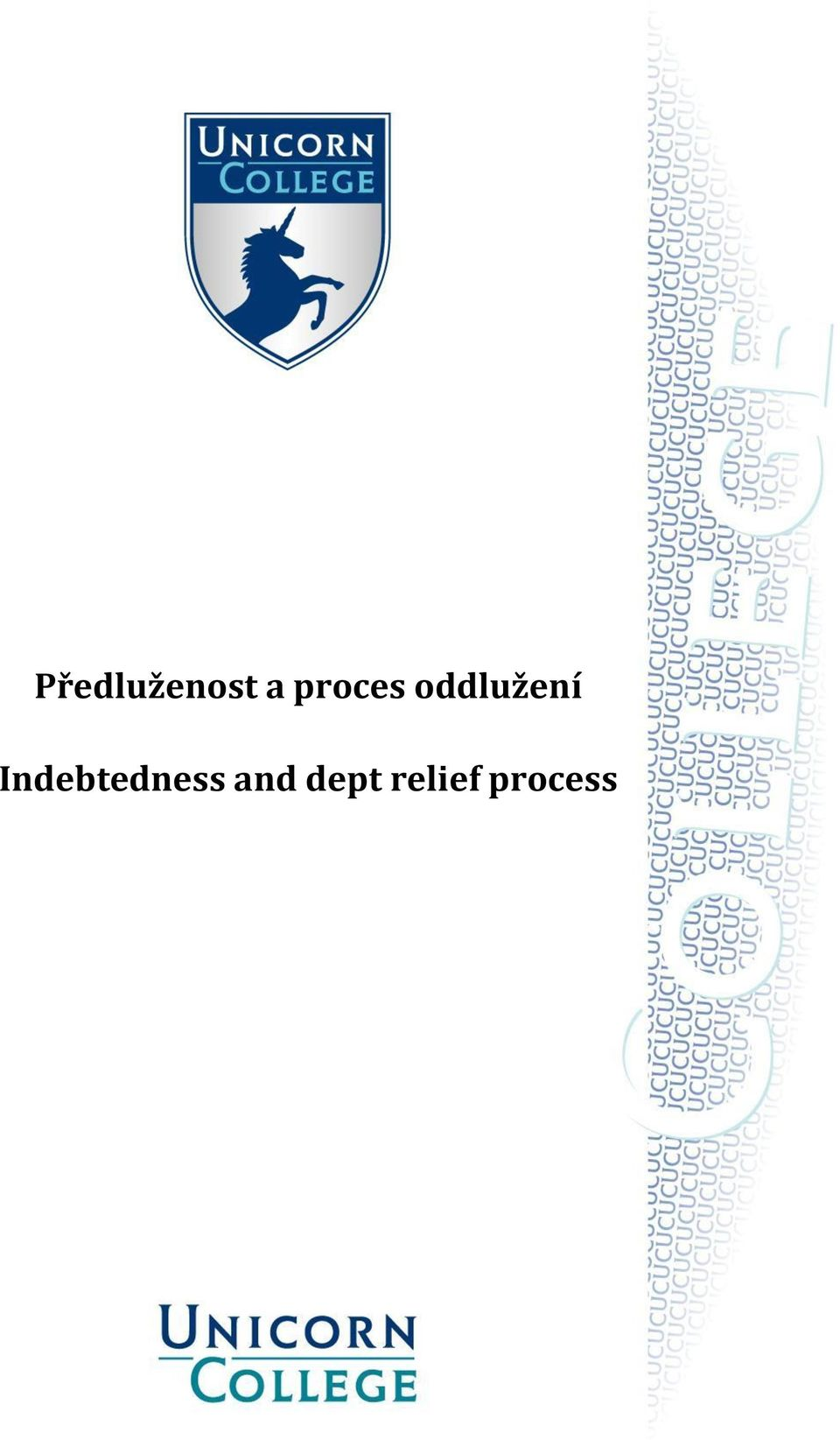 Indebtedness and
