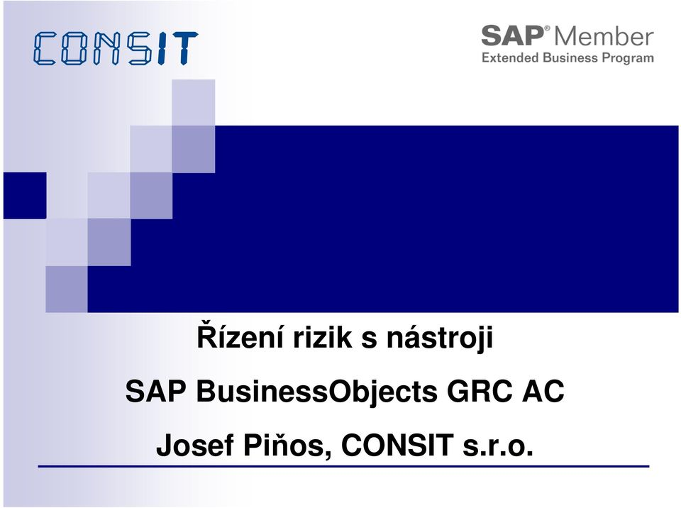 BusinessObjects GRC