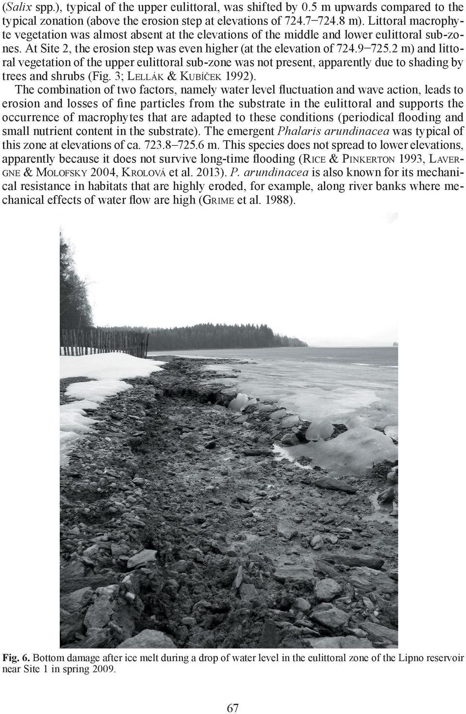 2 m) and littoral vegetation of the upper eulittoral sub-zone was not present, apparently due to shading by trees and shrubs (Fig. 3; LELLÁK & KUBÍČEK 1992).