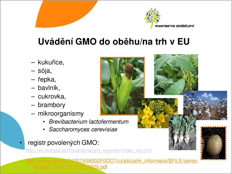 registr povolených GMO: http://ec.europa.eu/food/dyna/gm_register/index_en.