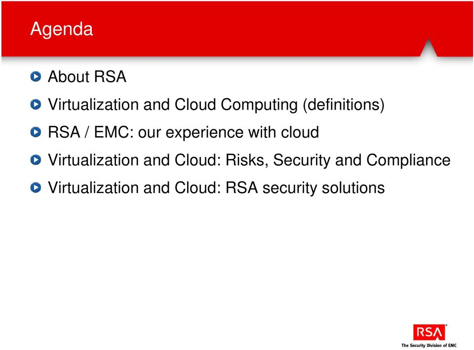 Virtualization and Cloud: Risks, Security and