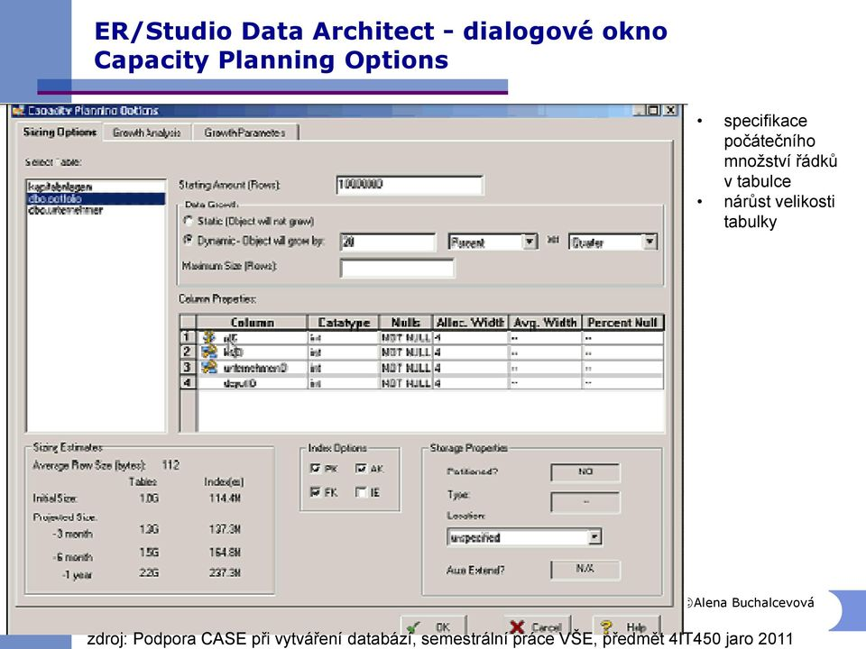 dialogové okno Capacity Planning Options specifikace
