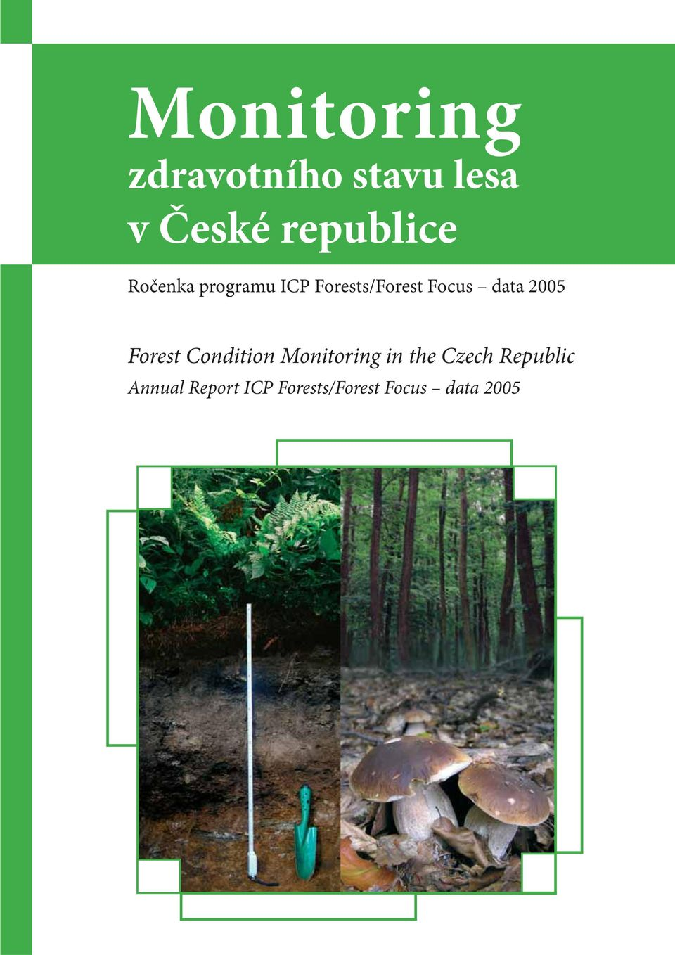 Focus data 2005 Forest Condition Monitoring in the
