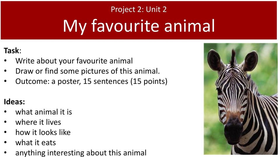 Outcome: a poster, 15 sentences (15 points) Ideas: what animal it is