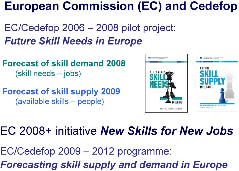 of skill supply 2009 (available skills people) EC 2008+ initiative New Skills for
