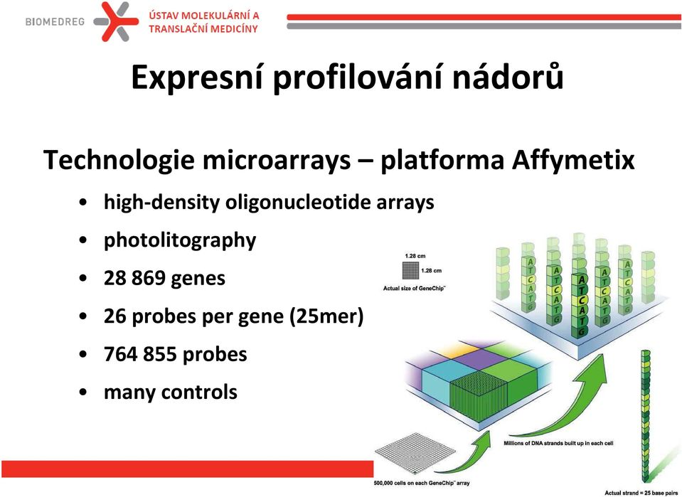 oligonucleotide arrays photolitography 28 869