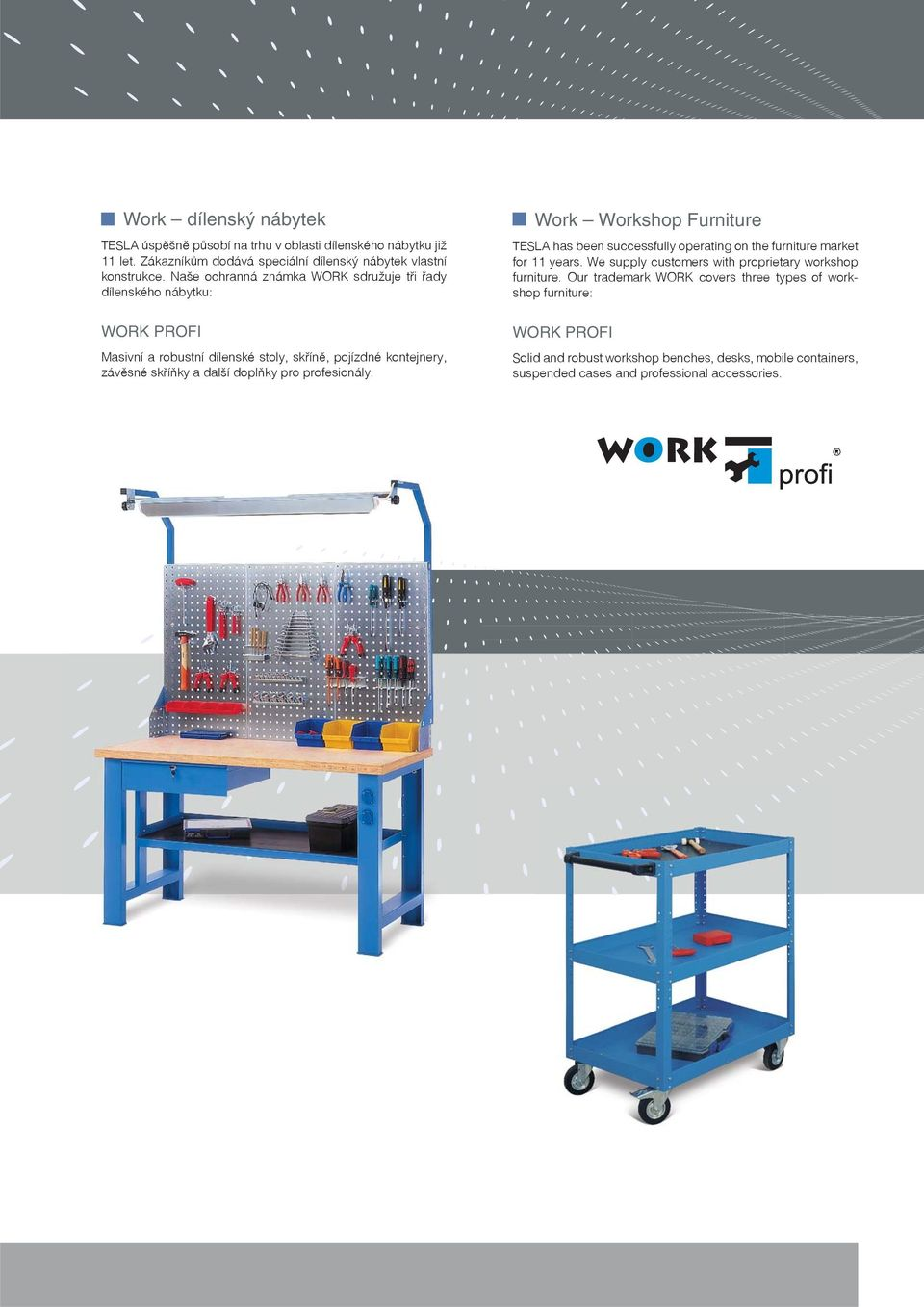 pro profesionály. Work Workshop Furniture TESLA has been successfully operating on the furniture market for 11 years.