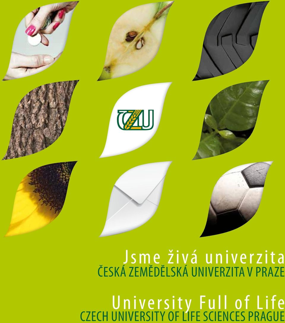 University Full of Life Czech