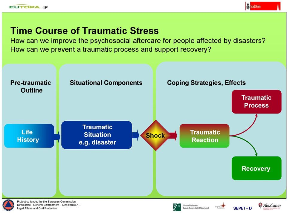Pre-traumatic Outline Situational Components Coping Strategies, Effects Traumatic Process Life History Traumatic Situation e.