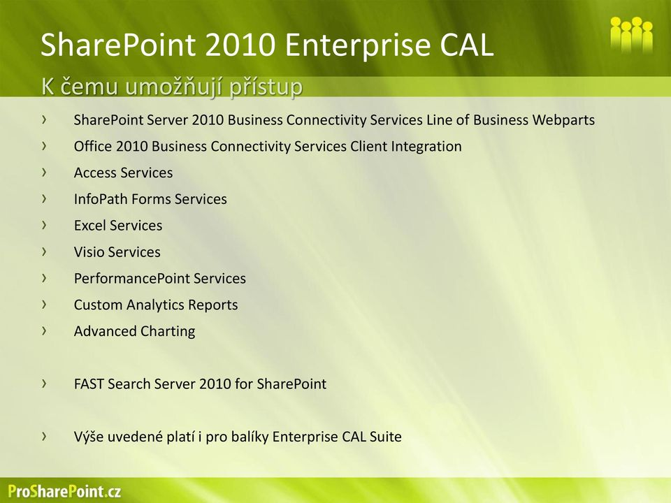 Services InfoPath Forms Services Excel Services Visio Services PerformancePoint Services Custom Analytics