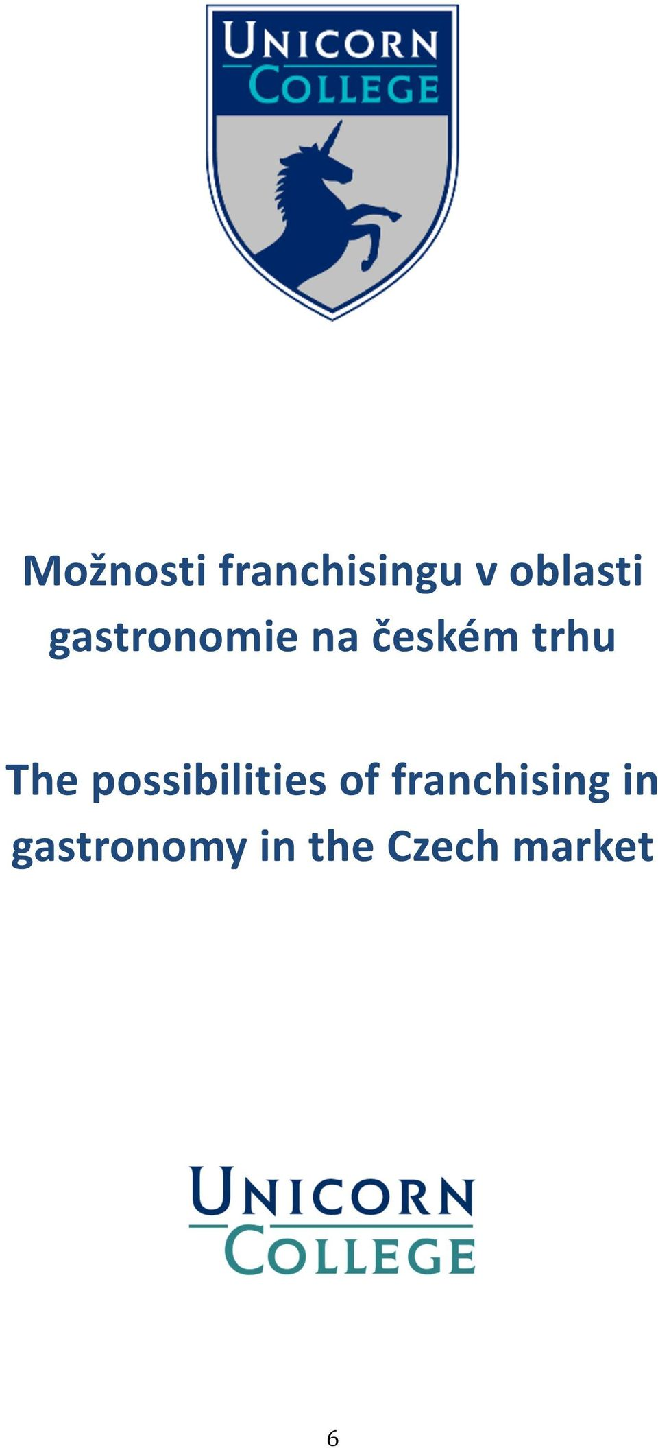 possibilities of franchising in