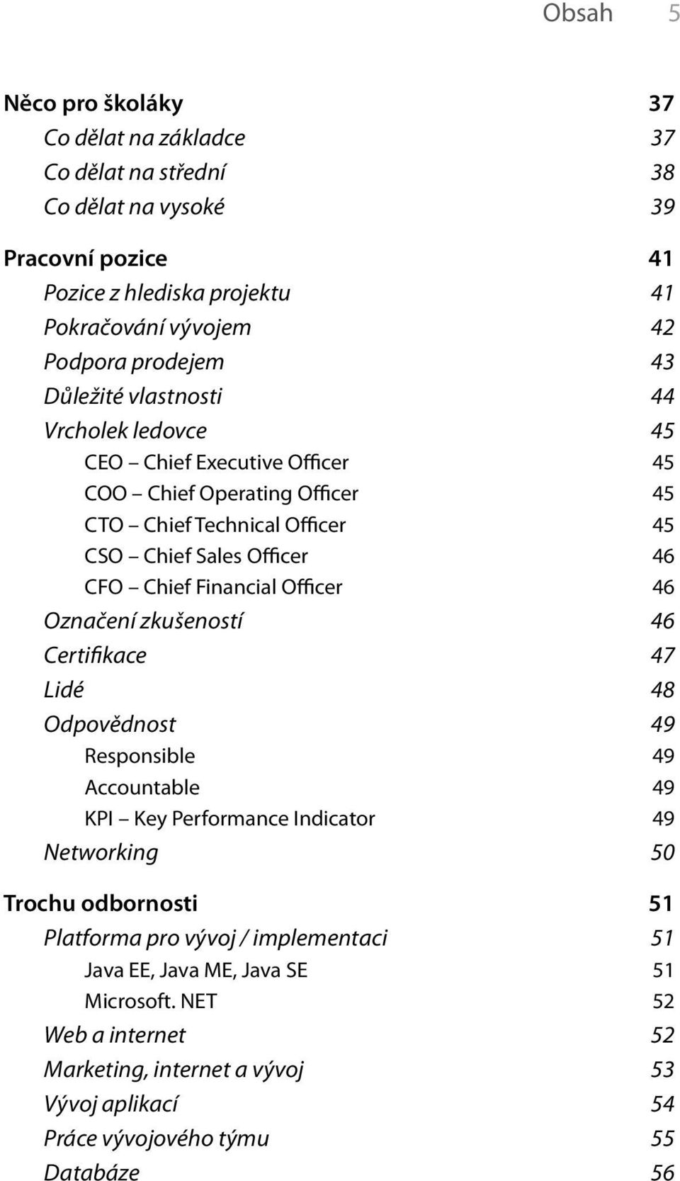 Chief Financial Officer 46 Označení zkušeností 46 Certifikace 47 Lidé 48 Odpovědnost 49 Responsible 49 Accountable 49 KPI Key Performance Indicator 49 Networking 50 Trochu odbornosti