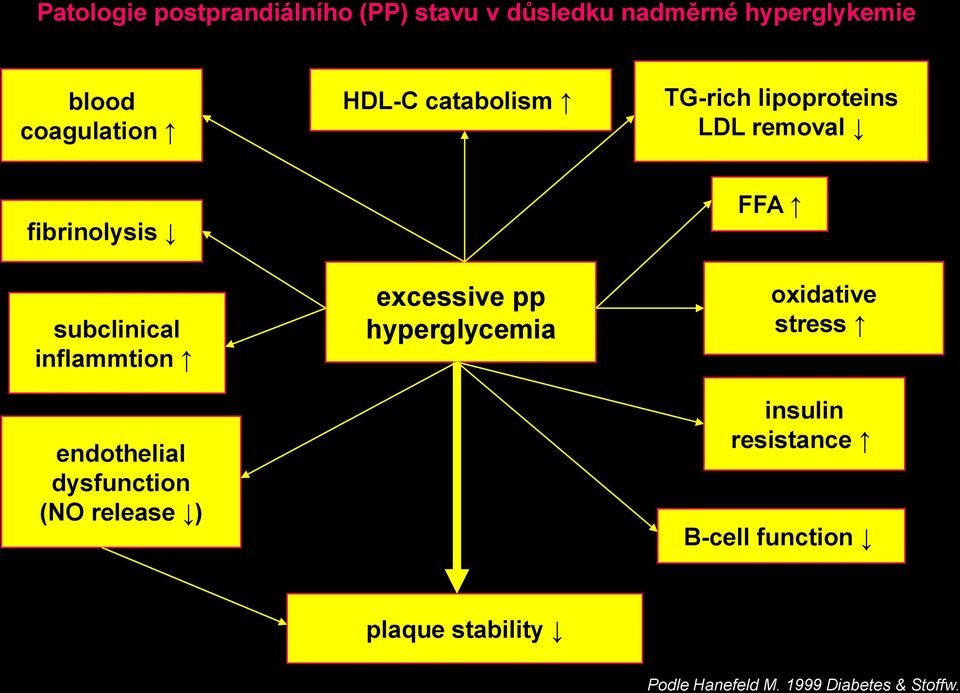 inflammtion endothelial dysfunction (NO release ) excessive pp hyperglycemia FFA