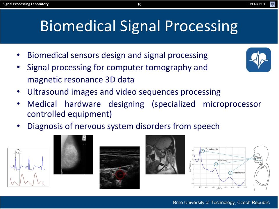resonance 3D data Ultrasound images and video sequences processing Medical hardware designing