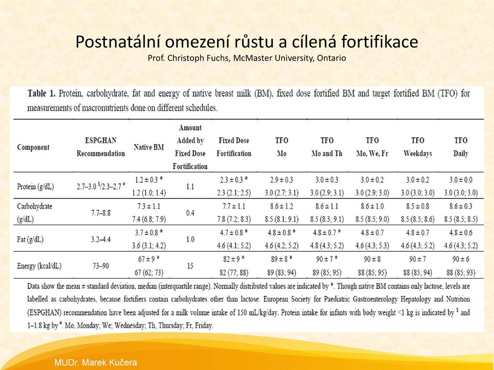 fortifikace Prof.