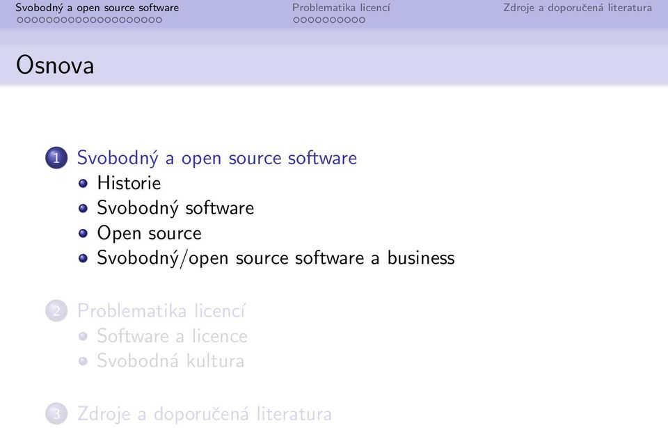 software a business 2 Problematika licencí