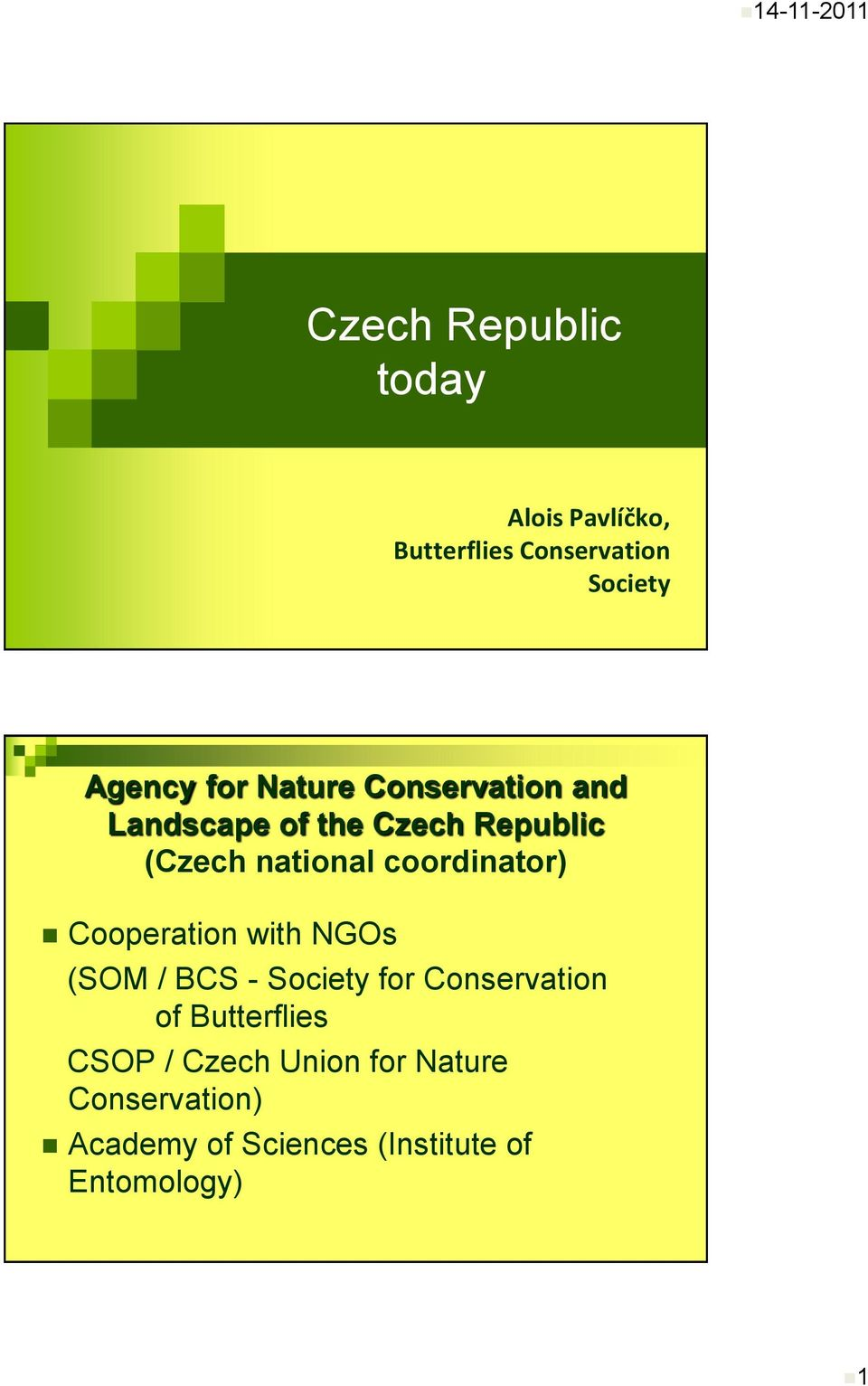 coordinator) Cooperation with NGOs (SOM / BCS - Society for Conservation of