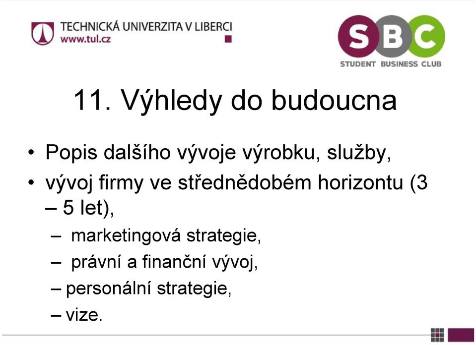horizontu (3 5 let), marketingová strategie,