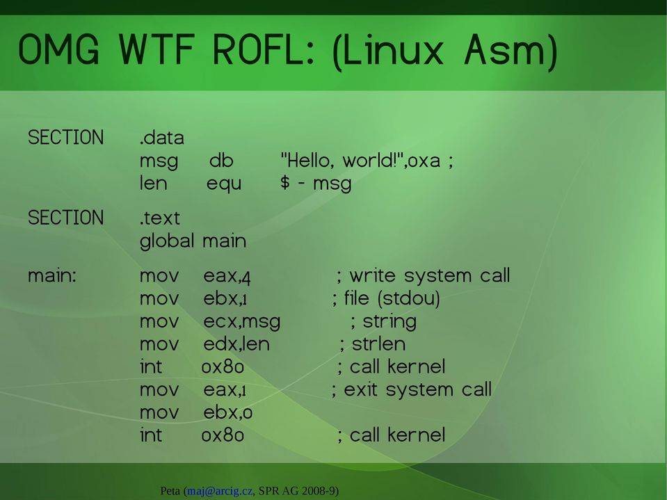 text global main main: mov eax,4 ; write system call mov ebx,1 ; file