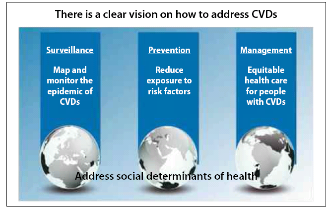 Zdroj: Global atlas on CVD