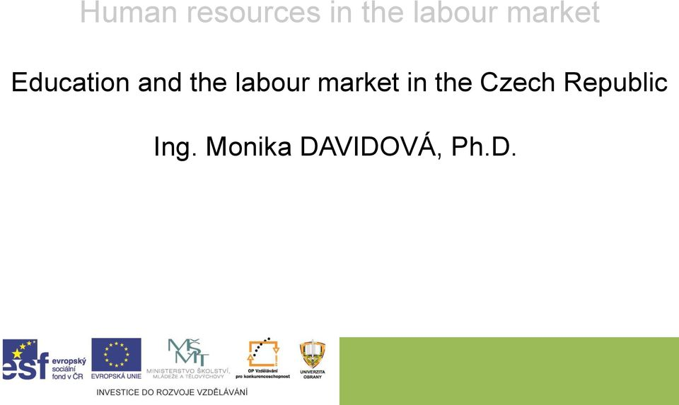 labour market in the Czech