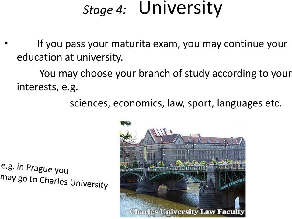 You may choose your branch of study according to your