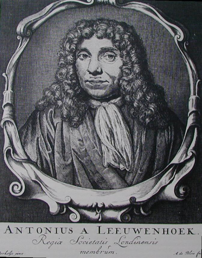 1681 Anthony van