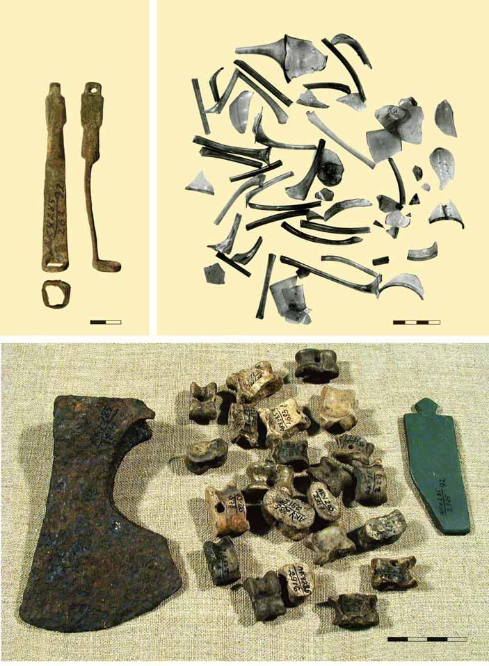 5 3 Fig. 5. Items from the hoard of alembics. Bilyar excavation LXI, pit 9a: AKУ85/6; AKУ85/30-3, 67, 68, 69, 70, 7; 3 AKУ85/6; AKУ85/683, 5, 8, 9, 58, 878, 95, 97, 96, 57; 5 AKУ85/95. Photo by T.