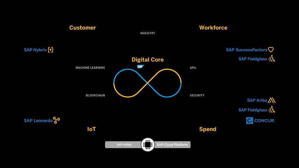 SAP Digital Business Framework 2017 SAP SE or an