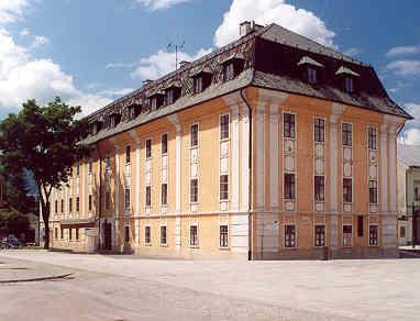 THE SLOVAK MEDICAL SOCIETY